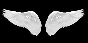 Wings file before background removed