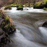 Graves Creek Oregon