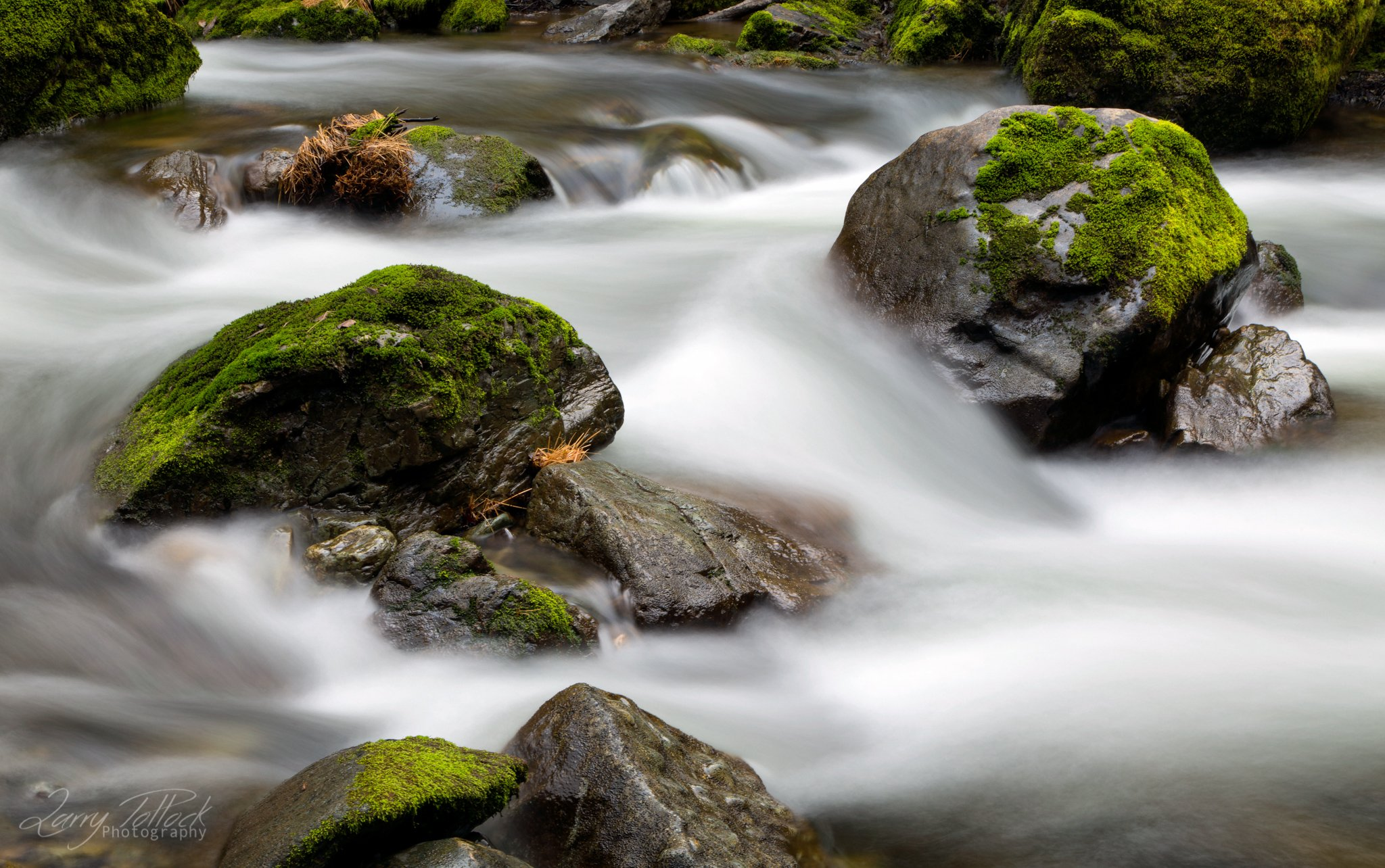Graves Creek Oregon Long Exposure
