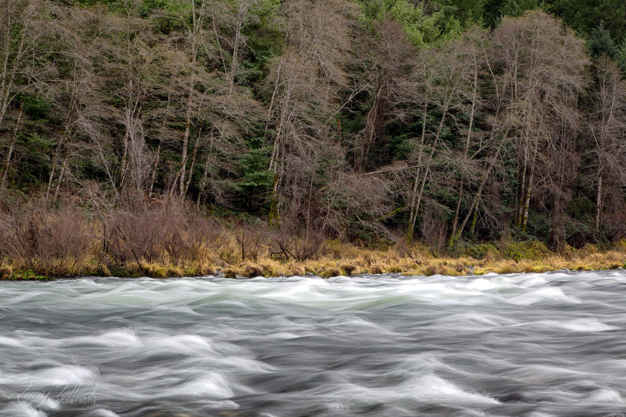 The Rogue River Long Exposure